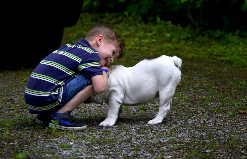 Little boy smiling and hugging a puppy