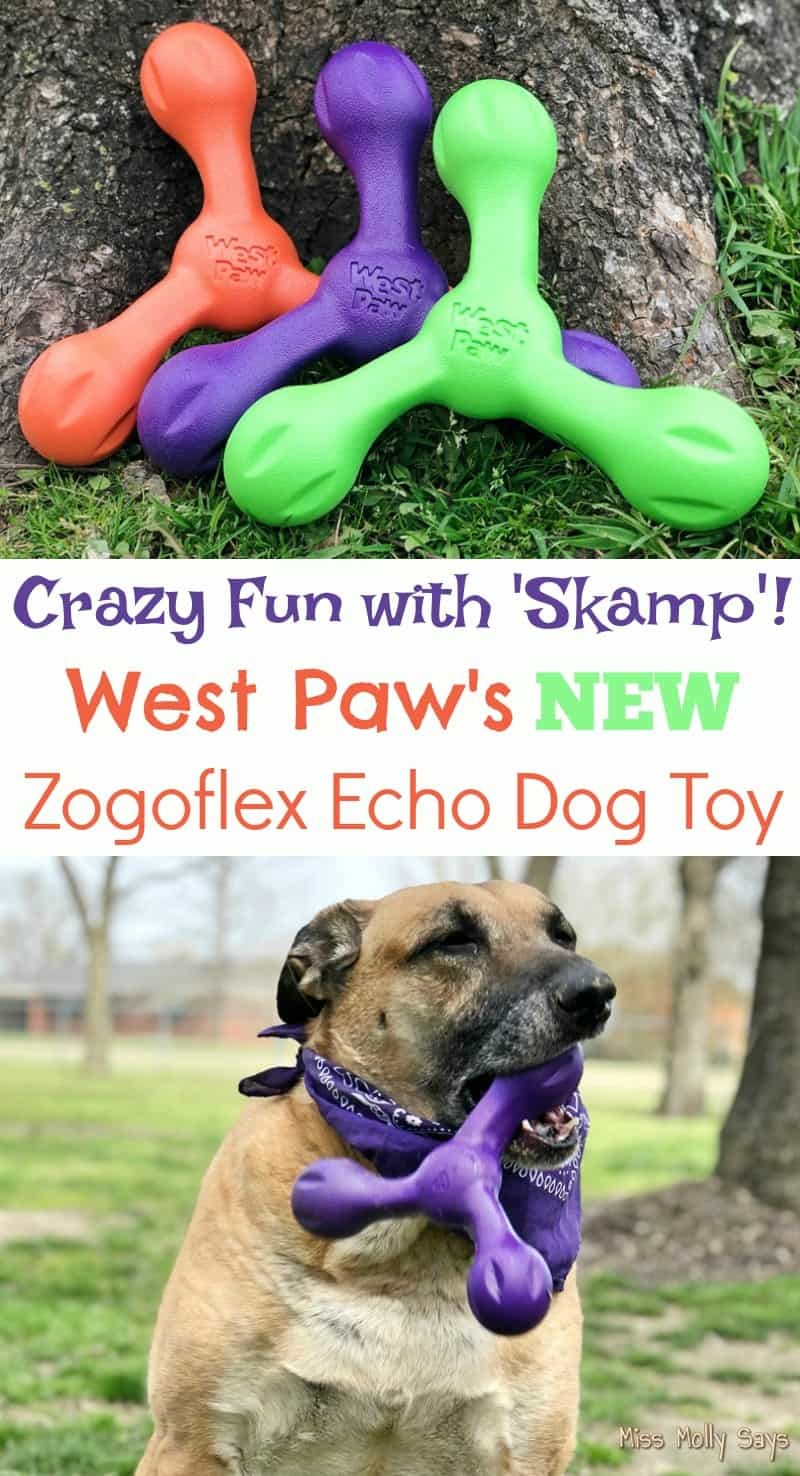 Crazy Fun with 'Skamp'! West Paw's NEW Zogoflex Echo Dog Toy