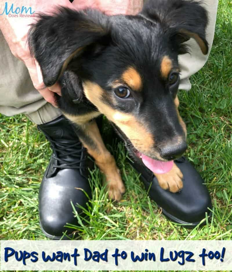 Lugz Drifter Zeo Mid Chukka Boots for Him!