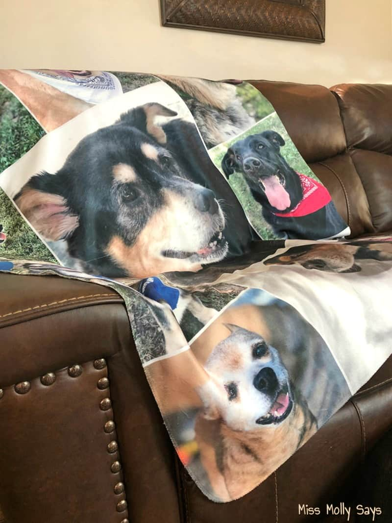 A Custom Sherpa Photo Blanket from Collage.com makes a Pawsomely Unique Gift!
