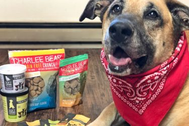 Treatibles CBD Treats for pets and Charlee Bear Grain Free dog treats are our top rated pet treats! #BabbleBoxxPets