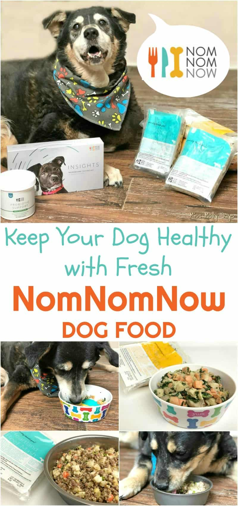 Keep Your Dog Healthy with Fresh NomNomNow Dog Food