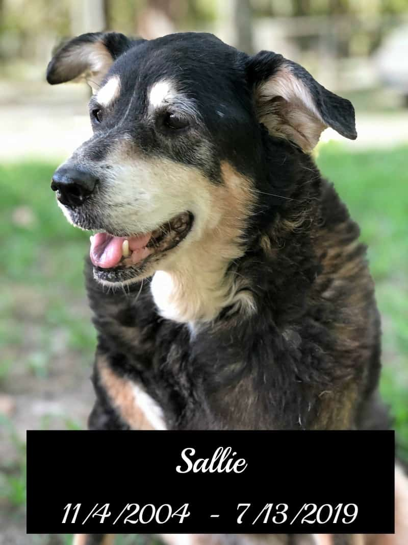 Sallie 7-11-19 death announcement