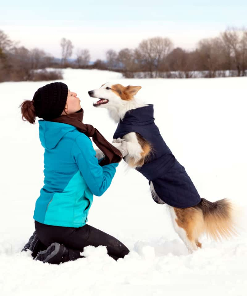 Woman and dog playing in the snow