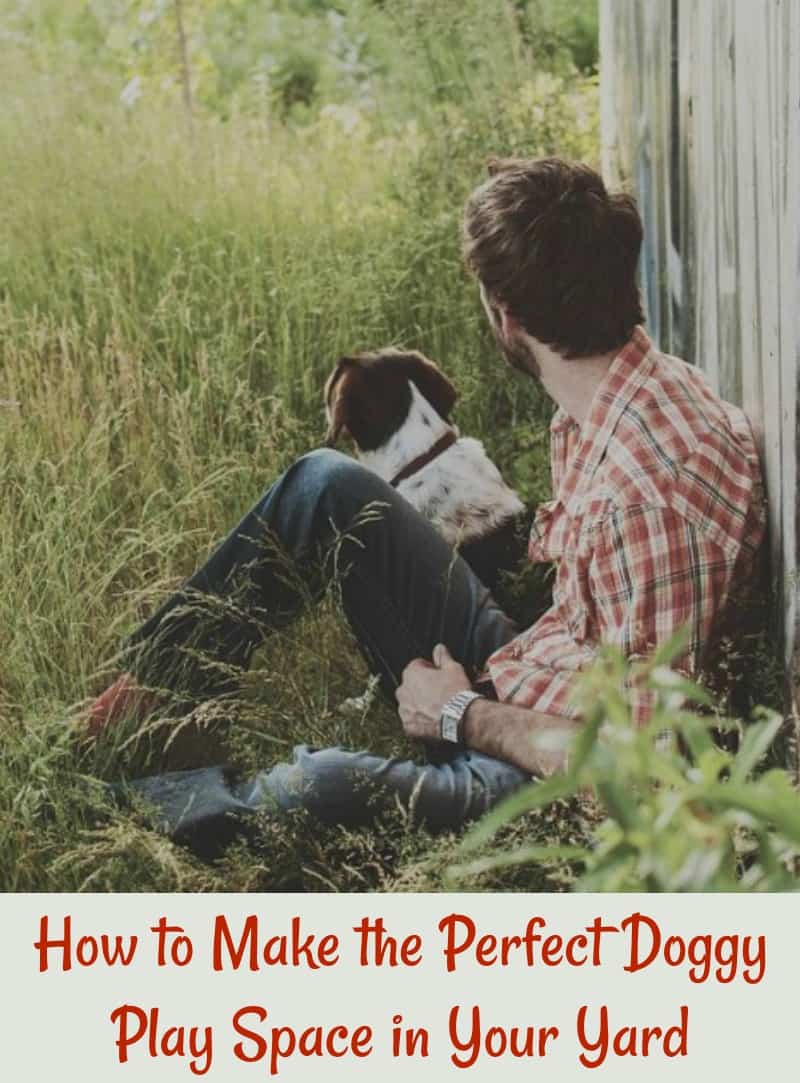 How to Make the Perfect Doggy Play Space in Your Yard