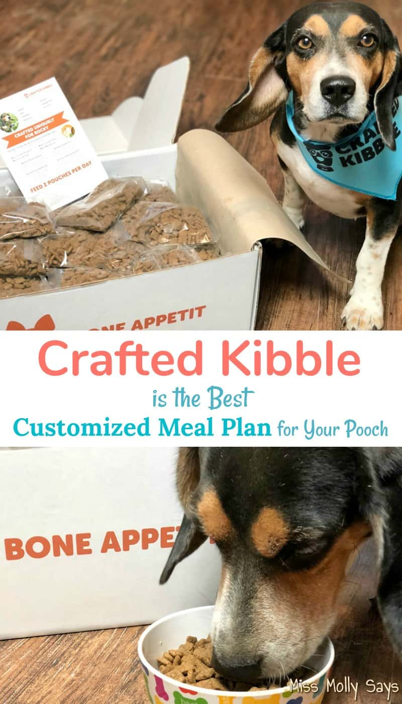 Crafted Kibble is the Best Customized Meal Plan for Your Pooch