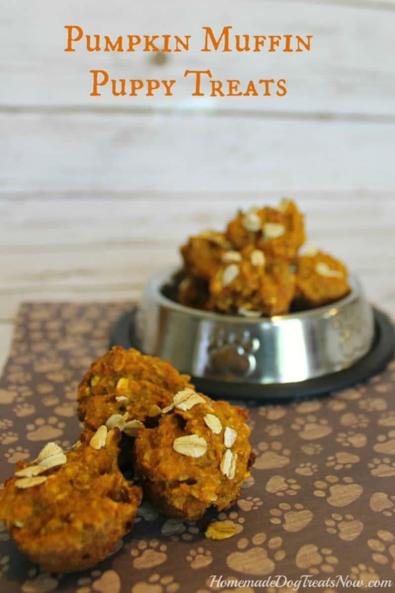 Pumpkin Puppy Muffins