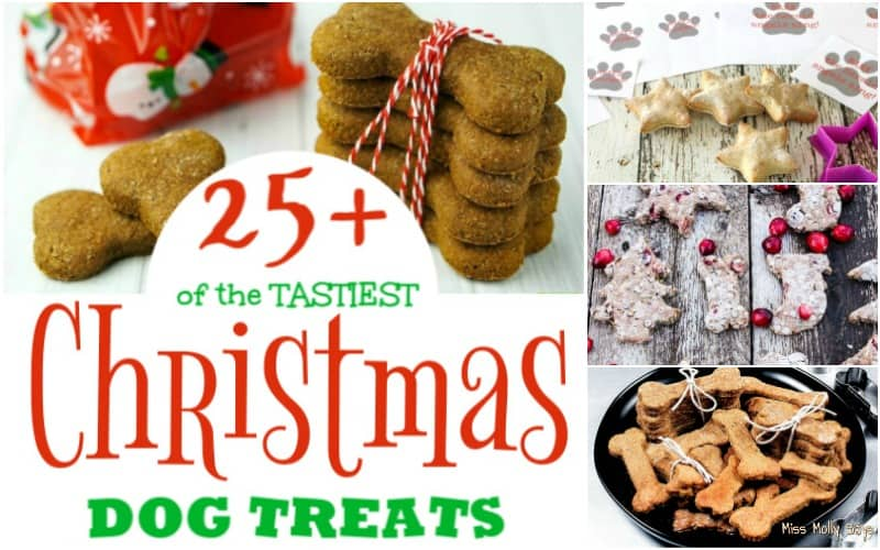 25+ of the TASTIEST Christmas Dog Treats for all Good Pups