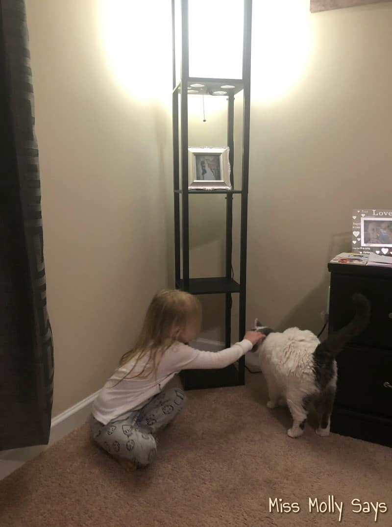 Brightech Maxwell LED Shelf Floor Lamp Sturdy Enough With Animals and Kids