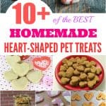 10+ of the BEST Homemade Heart-Shaped Pet Treats for Valentine's Day