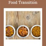 3 Tips for Helping Your Dog Through a Food Transition