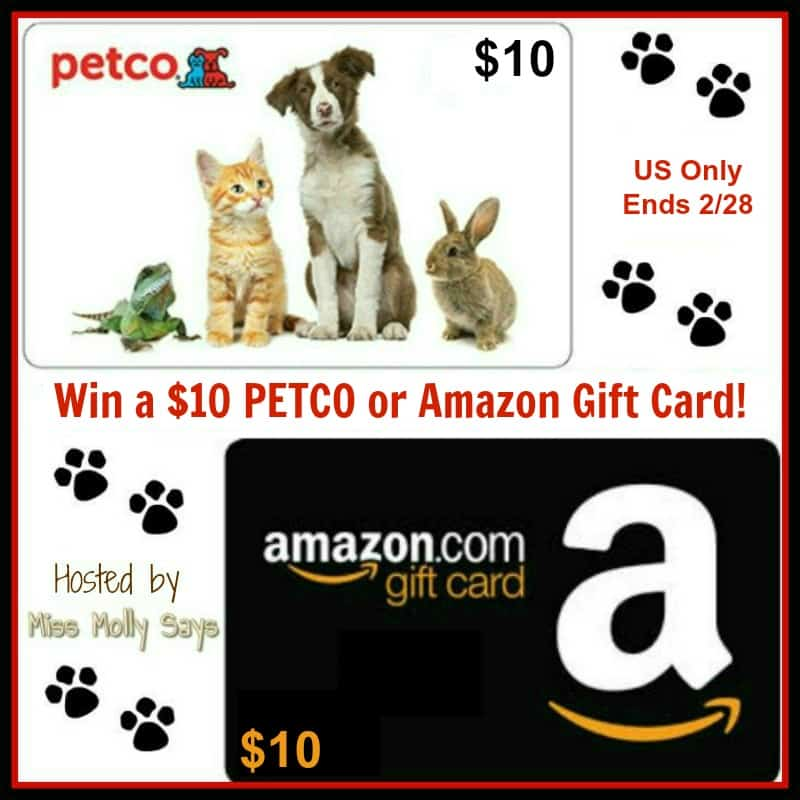 Enter for a chance to #win a $10 PETCO or Amazon Gift Card! Winner's choice!