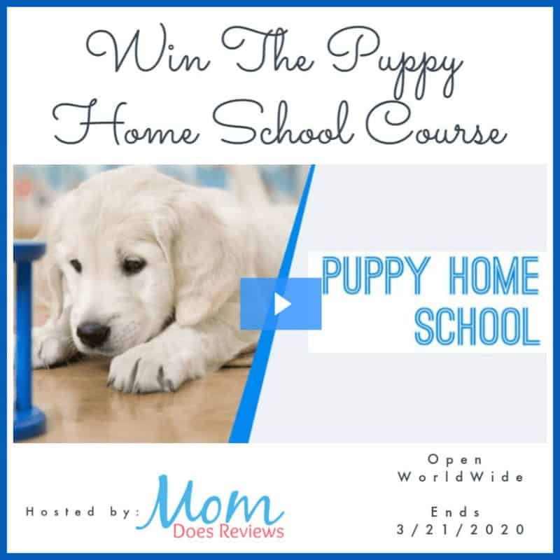"""Enter for a chance to win the """"Puppy Home School Online Course"""" from The Dog Coach!"""