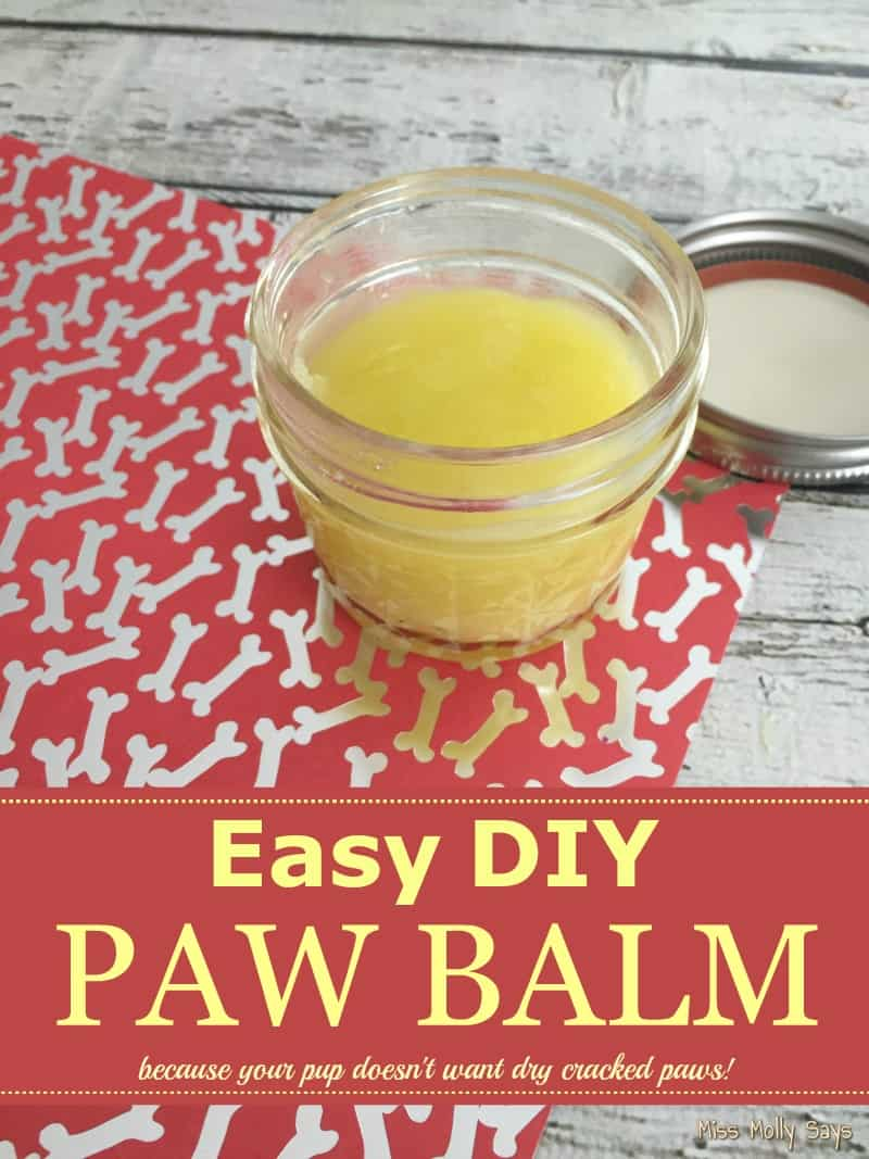 How to Moisturize Your Dog's Paws with an Easy DIY Paw Balm