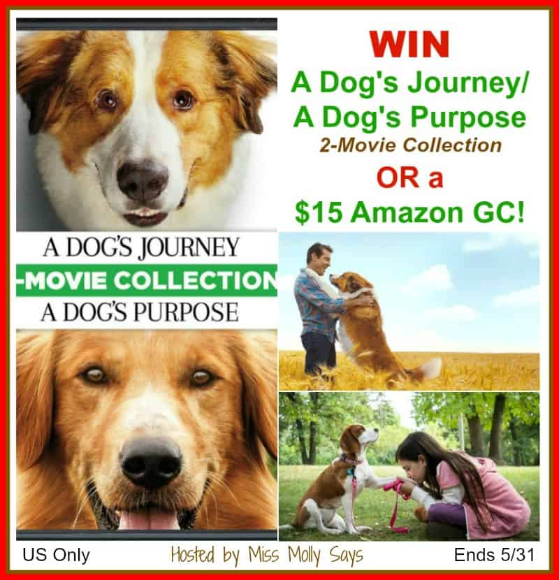 Enter for a chance to #win A Dog's Journey/A Dog's Purpose 2-Movie Collection OR a $15 Amazon Gift Card in our 'Movie Night' Giveaway Hop!