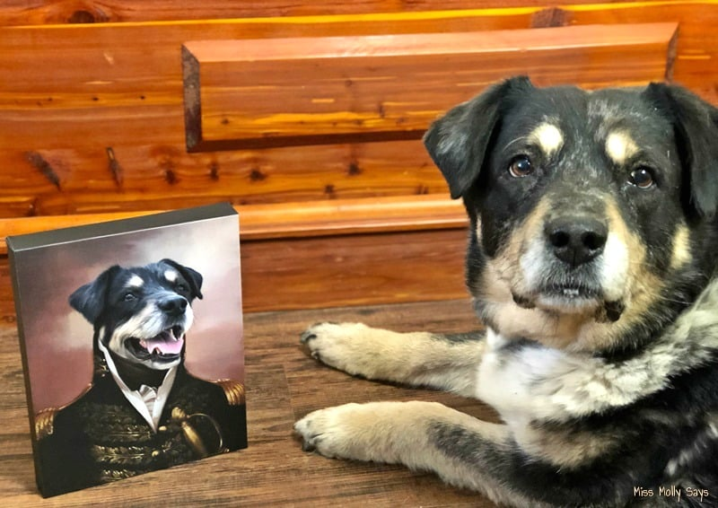 Crown & Paw Pet Portraits Make the Perfect Unique Gift
