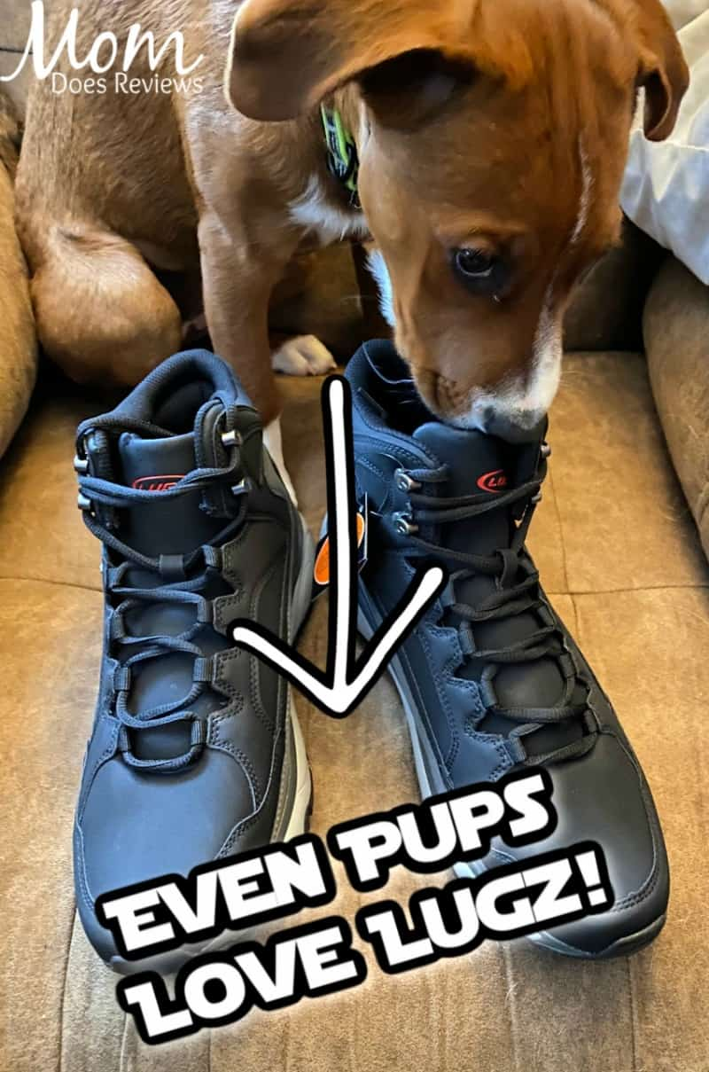 Lugz Adirondack Chukka Boots