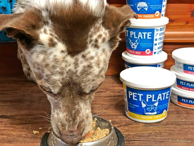 Pet Plate: The Fresh Dog Food Pups are WOOFING About!