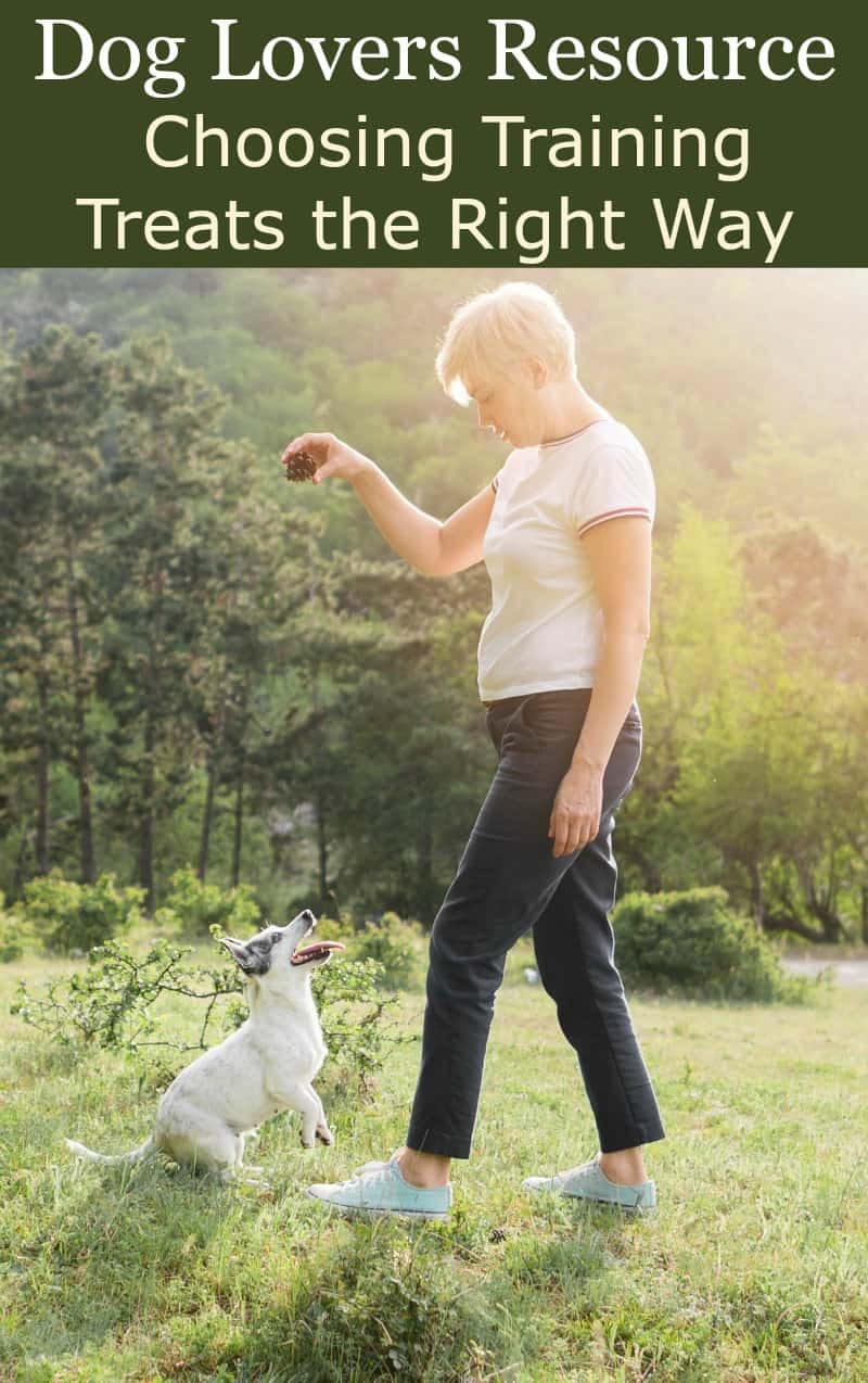 Dog Lovers Resource: Choosing Training Treats the Right Way