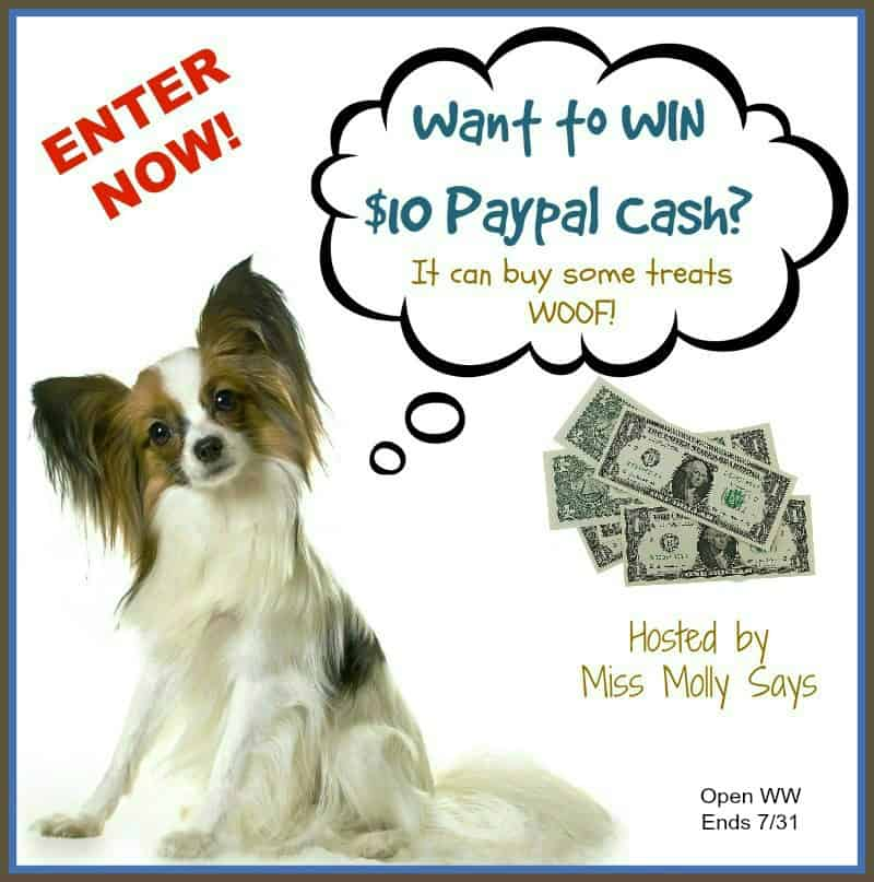 Who wants a little extra cash? Enter for a chance to #win $10 in Paypal Cash in our 'Seas the Day' Giveaway Hop!