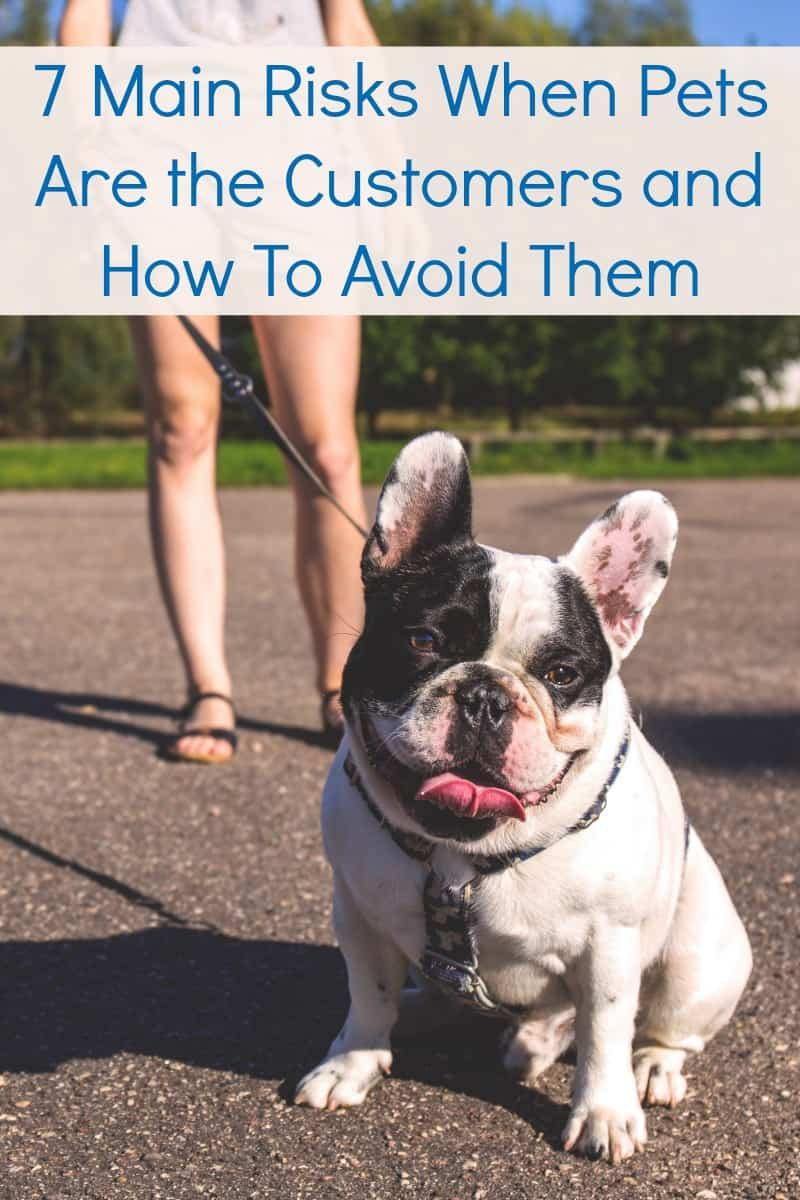 7 Main Risks When Pets Are the Customers and How To Avoid Them