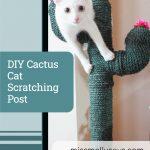 DIY Cactus Cat Scratching Post