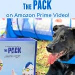 Dog Lovers Will LOVE 'The Pack' on Amazon Prime Video! #PackedWeekend
