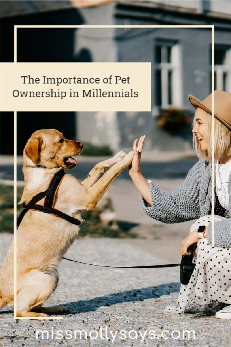 The Importance of Pet Ownership in Millennials