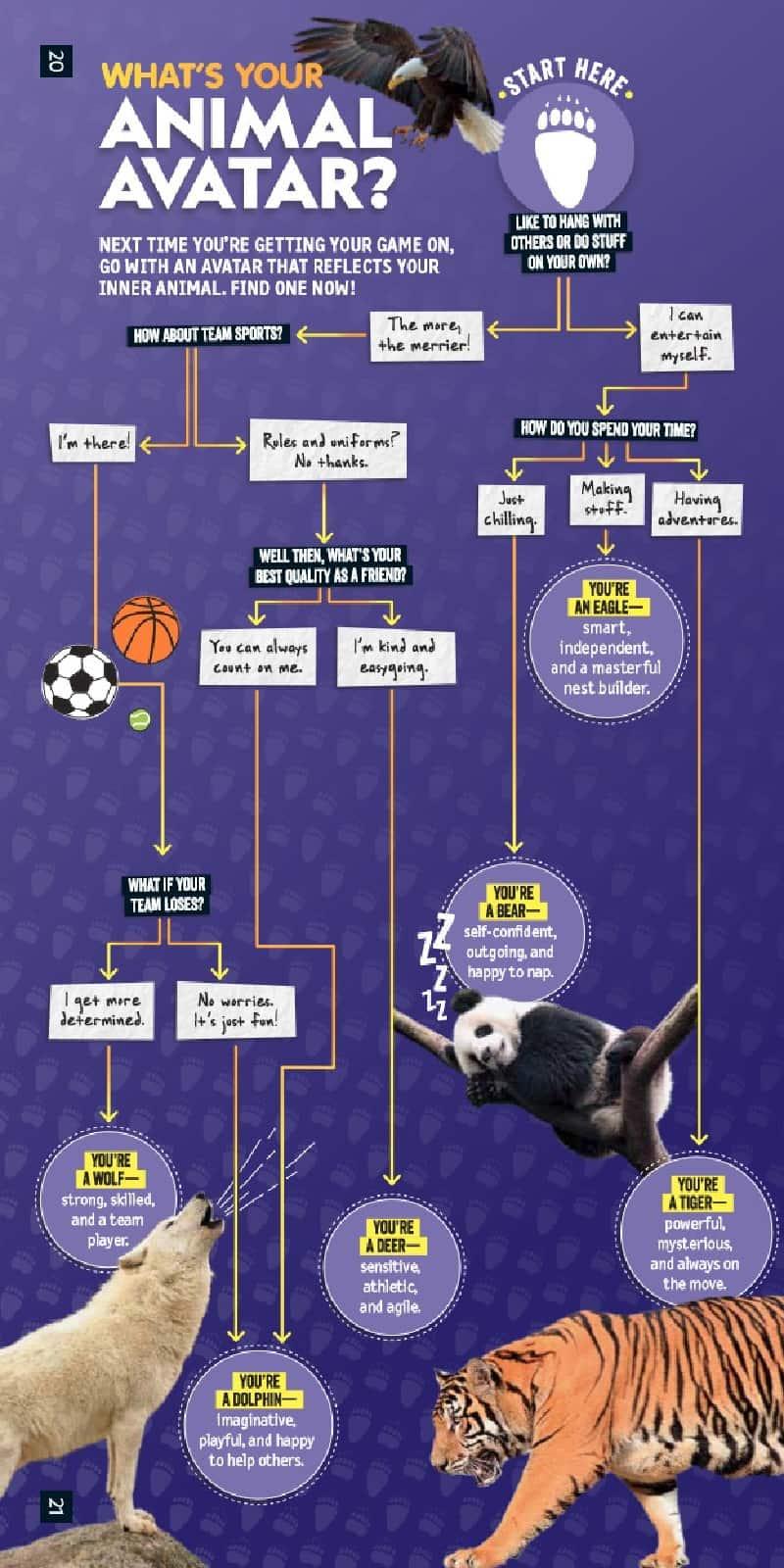 Nat Geo animal avitar infographic