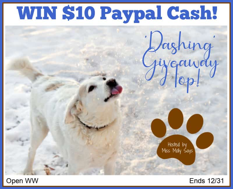 Who loves cash? Enter for a chance to #WIN $10 Paypal Cash in our 'Dashing' Giveaway Hop!