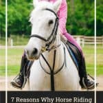 7 Reasons Why Horse Riding is a Great Hobby for Children