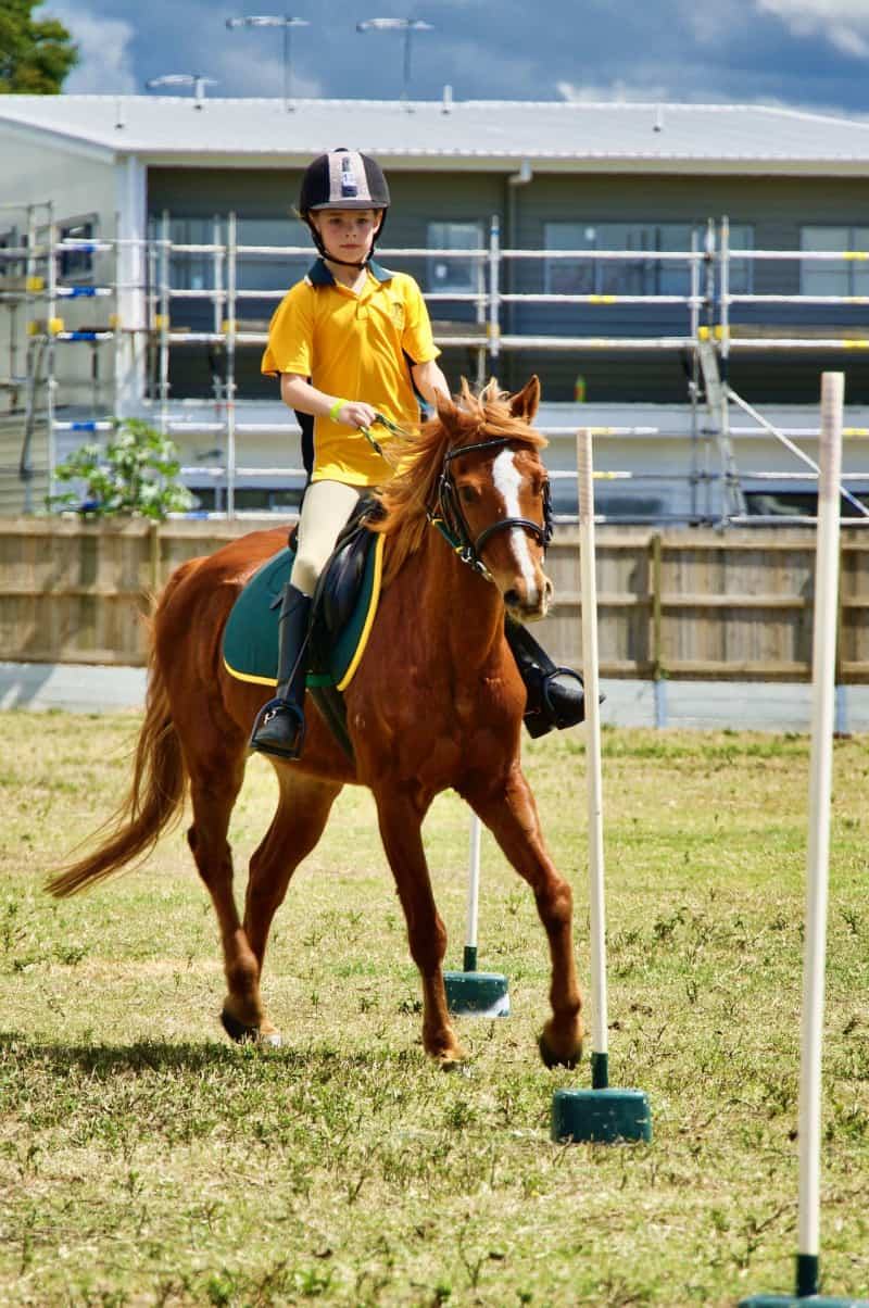 Boy riding a horse in competition