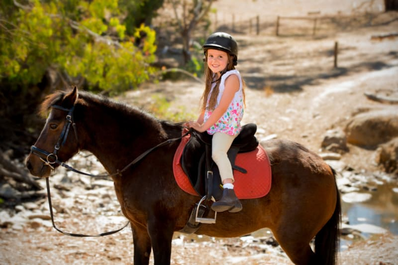 Little girl wearing a helmet riding a horse