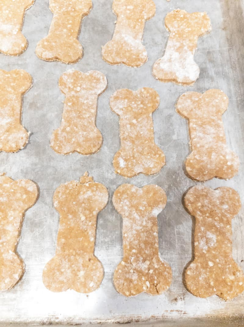 Placing cut out Peanut Butter Oatmeal Banana Dog Treats on cooking sheet