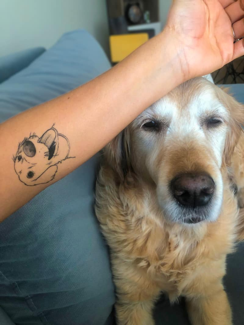 Arm with dog tattoo with senior dog