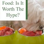 Raw Pet Food: Is It Worth The Hype?