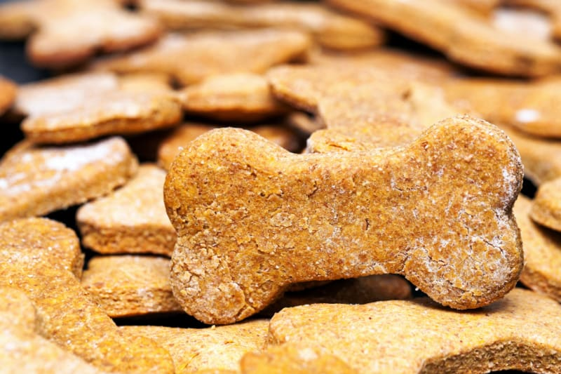 Large batch of bone-shaped homemade dog cookies