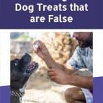 10 Myths Concerning CBD Dog Treats that are False