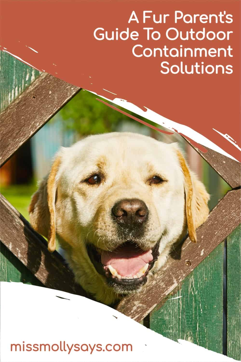 A Fur Parent's Guide To Outdoor Containment Solutions