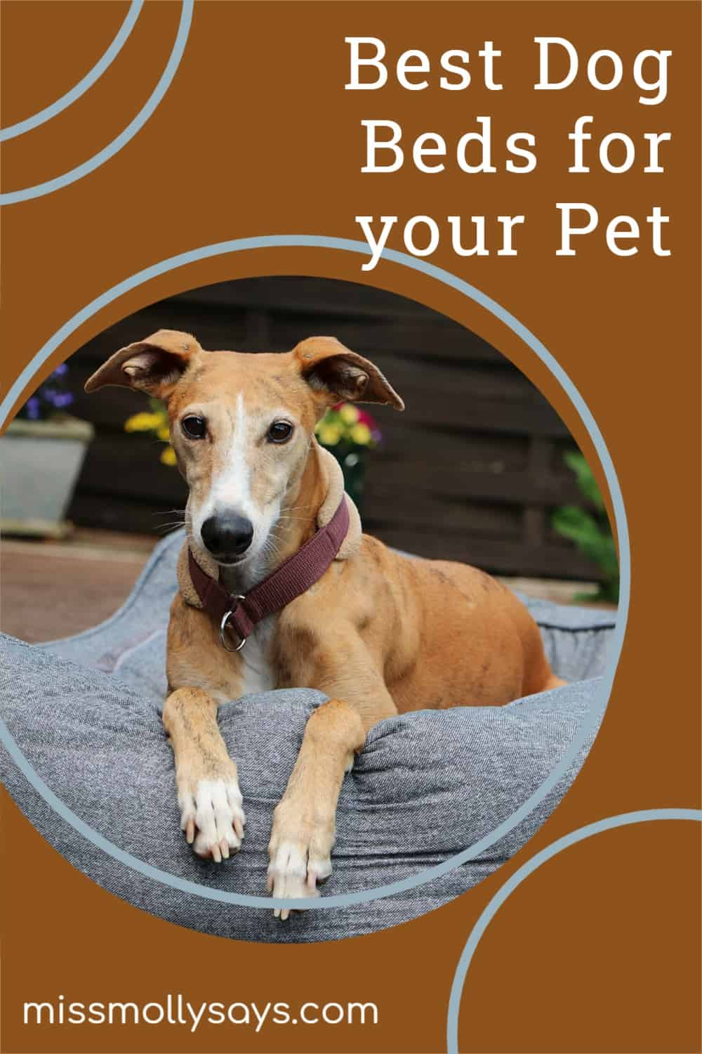 Best Dog Beds for your Pet