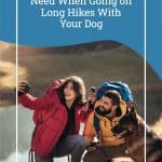 What Essentials You Need When Going on Long Hikes With Your Dog