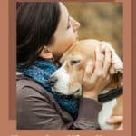 How to Cope When Your Dog Becomes Blind or Visually Impaired