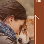 Planning Ahead When Your Family Pet's Health Starts to Fail