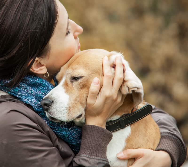 Woman hugging a beagle