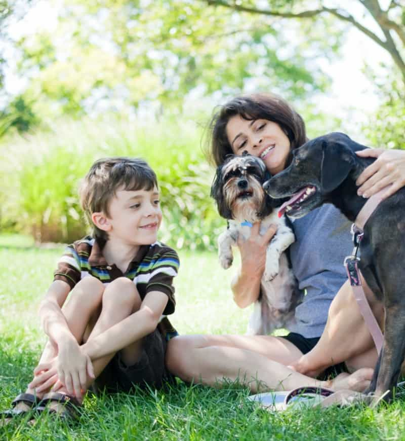 Black Labrador Retriever with woman, child, and another dog