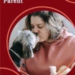 5 Ways to Be a Responsible Pet Parent