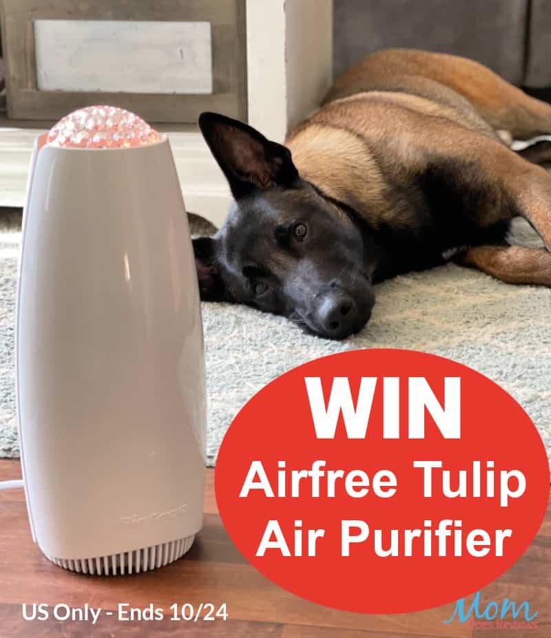 Win an Airfree Tulip Air Purifier!