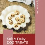 NO-BAKE Soft & Fruity Dog Treats with Apples & Cranberries Perfect for Pill Pockets